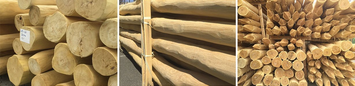Robinie Kaufen Aussenbauholz Landschaftsbau Holz Rohnert In Berlin